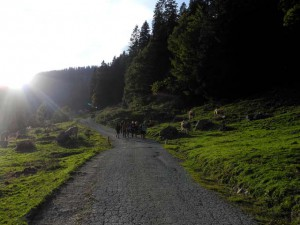 Aton-Schule-Bergtour-Oberstufe-2kl